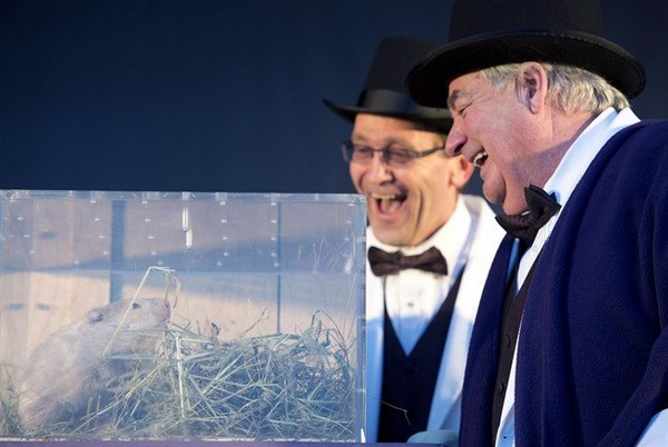 Wiarton, Ontario, Mayor John Close (right) laughs after listening to groundhog Wiarton Willie