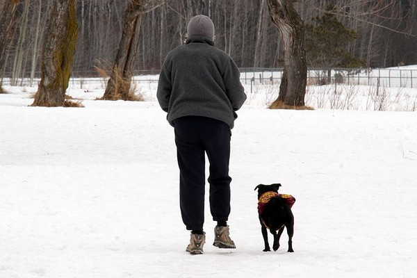 A woman walks her dog off leash Monday on property behind Thunder Bay